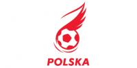 Oceny Polaków po meczu z Niemcami