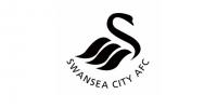 Swansea pożegna się z zawodnikiem