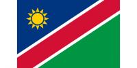 Reprezentacja Namibii z nowym selekcjonerem